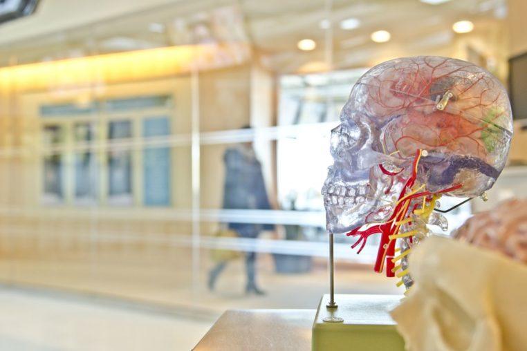 neurologo en tenerife