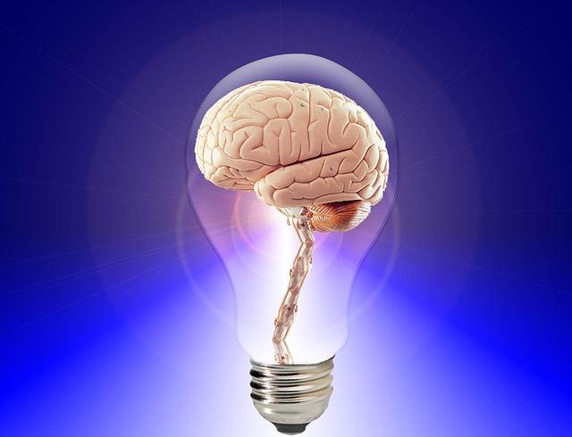 """Desde el año 2014, cada 22 de julio se conmemora el """"Día Mundial del Cerebro"""". Una iniciativa de la Federación Mundial de Neurología (WFN"""