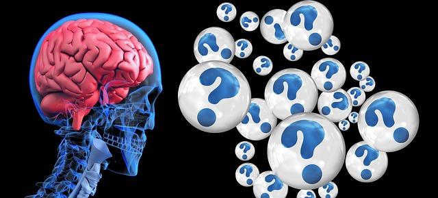 la imprtancia del neuropsicolgo